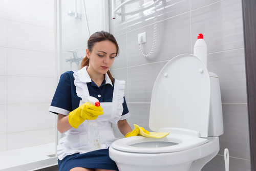 How to Keep My Toilet Sparkling Clean?